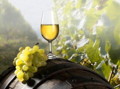 Fototapeta wino
