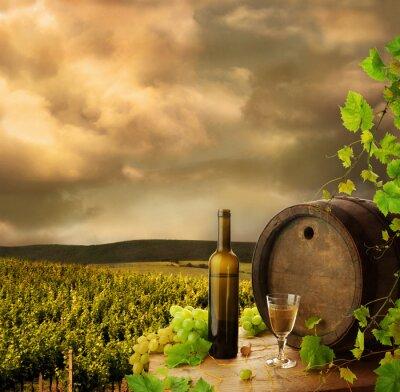 Fototapeta Wino, baryłka i winorośli na tle wieczornego wczesnego winnicy