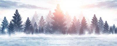 Fototapeta Winter abstract landscape. Sunlight in the winter forest.