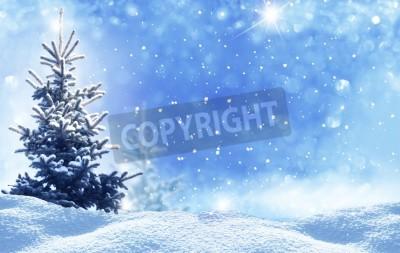 Fototapeta winter christmas landscape