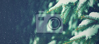 Fototapeta Winter Holiday Evergreen Christmas Tree Pine Branches Covered With Snow and Falling Snowflakes, Horizontal