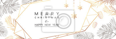 Fototapeta Winter holidays or Christmas background with branches and snowflakes.