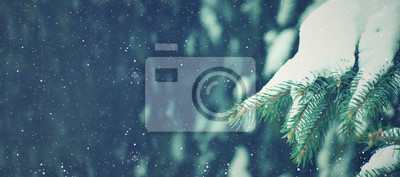 Fototapeta Winter Season Holiday Evergreen Christmas Tree Pine Branches Covered With Snow and Falling Snowflakes, Horizontal