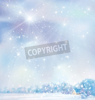 Fototapeta Winter snowy landscape with house in forest,illustration