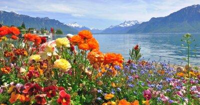 Fototapeta Wiosenne kwiaty w rozkwicie
