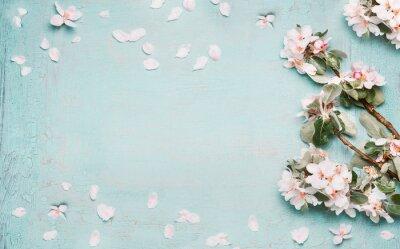 Fototapeta Wiosną charakter tła piękny kwiat w niebieskim kolorze pastelowym, widok z góry, transparent. Wiosna koncepcji
