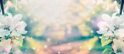 Fototapeta Wiosna kwiat na niewyraźne tło natury z promieni słonecznych, transparent. Retro stonowanych