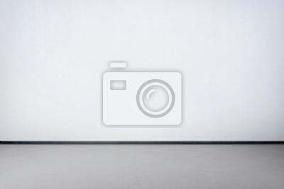 Fototapeta Wnętrze pokoju z białą ścianą i betonową szarą podłogą