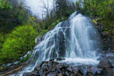 Fototapeta Wodospad Gruzji