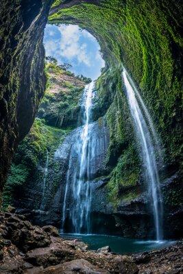 Fototapeta Wodospad Madakaripura to najwyższy wodospad w głębokim lesie we wschodniej Jawie w Indonezji.