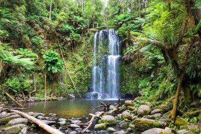 Fototapeta wodospad Tasmania