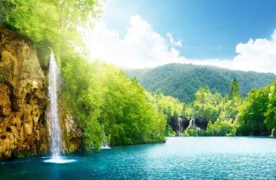 Fototapeta Wodospad w głębokim lesie