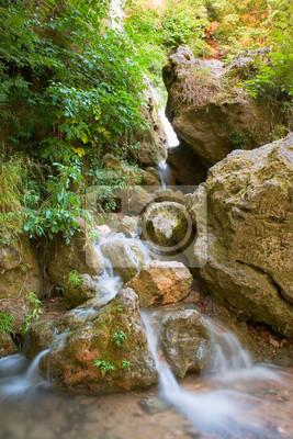 Wodospad w górskim lesie