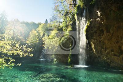 Wodospad w lesie, Jeziora Plitvice, Chorwacja