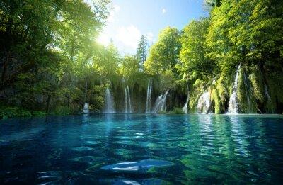 wodospad w lesie, Jeziora Plitwickie, Chorwacja
