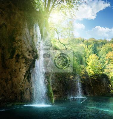 Wodospad w lesie, Plitvice, Chorwacja