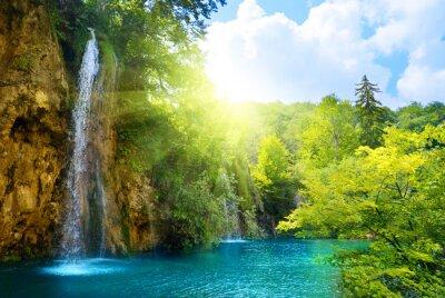 Fototapeta wodospady w lesie