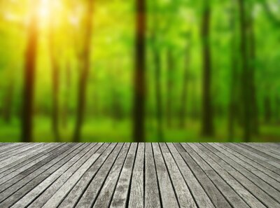 wooden table forest