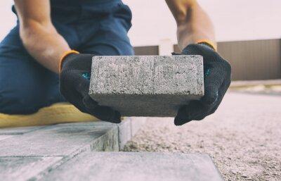 Fototapeta Worker lining paving slabs path