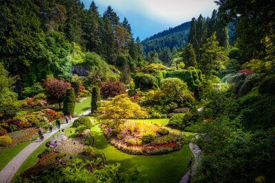 Fototapeta Wpuszczenie ogród Ogrody Butcharta