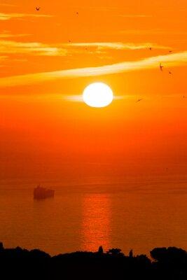 Fototapeta Wschód słońca nad morzem z ładunkiem osieroconych