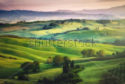 Fototapeta Wspaniałe zielenie w krajobrazie i słoneczne malowane.