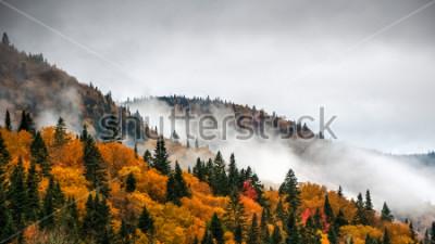 Fototapeta Wspaniały kolorowy dzień jesieni w parku Jacques Cartier, Quebec, Kanada