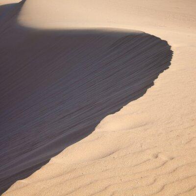 Fototapeta wydma barkhan, wieczorem światło