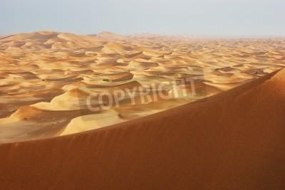 Fototapeta Wydmy piaszczyste pustyni Arabskiej na zachodzie słońca