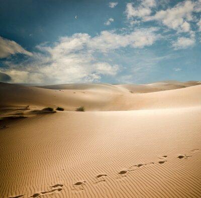 Fototapeta Wydmy Sahara
