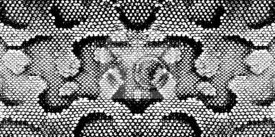 Fototapeta Wydrukować wąż tekstury czarny biały