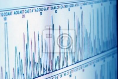 wykres na ekranie komputera science