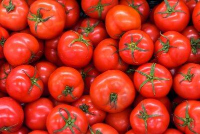 Fototapeta Wyśmienicie czerwoni pomidory w lato tacy rynku rolnictwa gospodarstwie rolnym organicznie organicznie. Świeże pomidory, może być używany jako tło