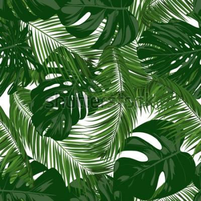 Fototapeta Wzór z wektor Monstera i liści palmowych. Tło egzotyczne lato. Liście zielonej dżungli. Tropikalny wzór dla druku, papieru, tkaniny, tkaniny, tapety, opakowania, projektowania tkanin.