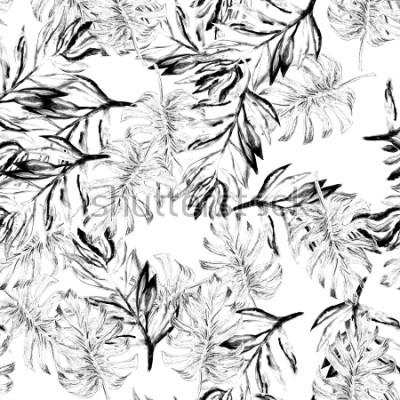 Fototapeta Wzorzec akwarela tropikalny monstera wzór. Ręcznie malowane akwarela ilustracja potwora. Wzór tropikalny. Liście palmowe. Czarno-biały liść lasy des
