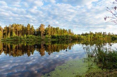 Fototapeta летний пейзаж на пруду с отражением леса в воде, Россия, Урал