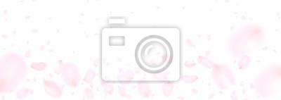 Fototapeta 風 に 舞 う 花 び ら