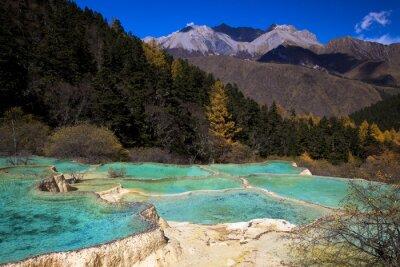 Fototapeta 秋 の 玉翠 彩 池