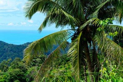 Fototapeta Остров Самуи  - вид сверху