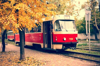 Fototapeta Одесский трамвай
