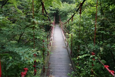 Fototapeta 橋