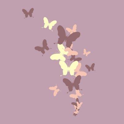 Fototapeta Бабочки