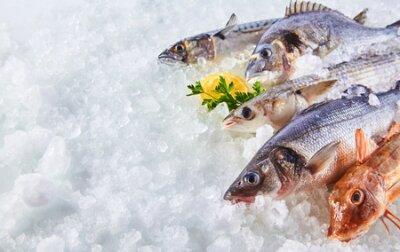 Fototapeta Wysokie kĘ ... tcie Martwa natura różnych Å> wieżych Å> wieżych chÅ,odów na Å,óżku zimnego lodu w straganie z rynku owoców morza z miejsca na kopię