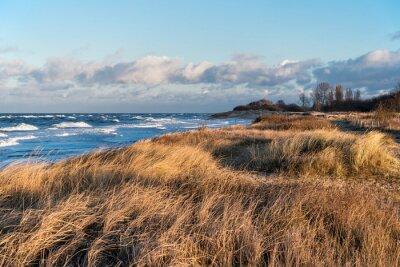 Fototapeta Z widokiem na wybrzeże Morza Bałtyckiego