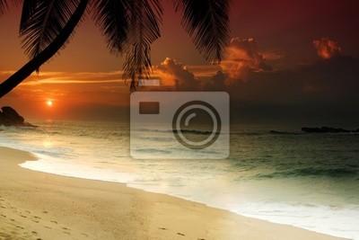 Fototapeta Zachód słońca na Sri Lance