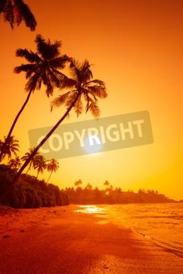 Fototapeta Zachód słońca na tropikalnej plaży