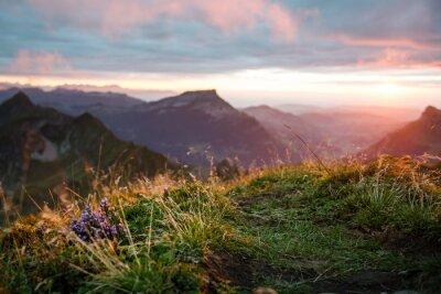Fototapeta Zachód słońca nad Brienzer Rothorn, Oberland Berneński, Szwajcaria