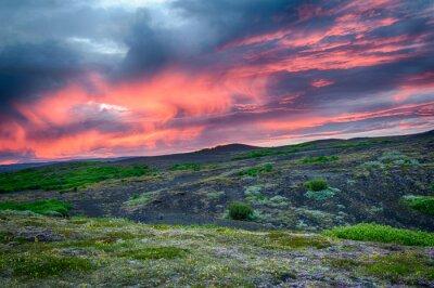 Fototapeta Zachód słońca nad łąką