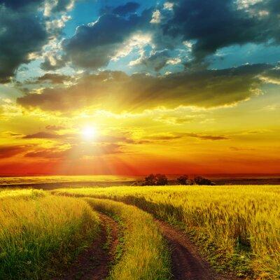 Fototapeta zachód słońca nad wiejskiej drodze w pobliżu green field