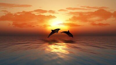 Fototapeta Zachód słońca oceanu z delfinami skaczących